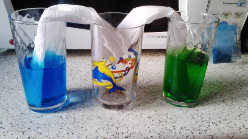 IMG 20160517 195502 1024x576 Играем и экспериментируем дома: Путешествующая цветная вода