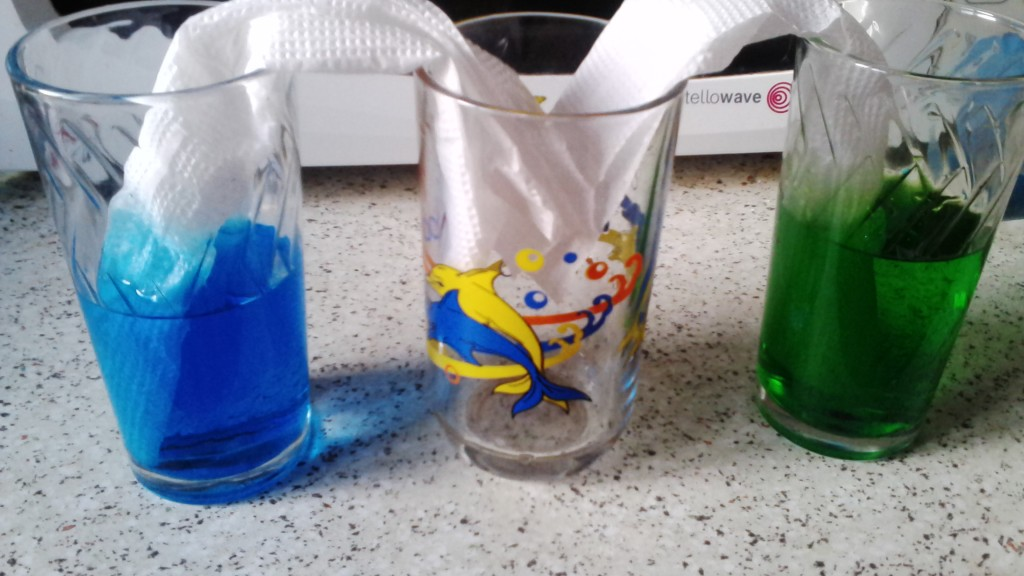 IMG 20160517 195527 1024x576 Играем и экспериментируем дома: Путешествующая цветная вода