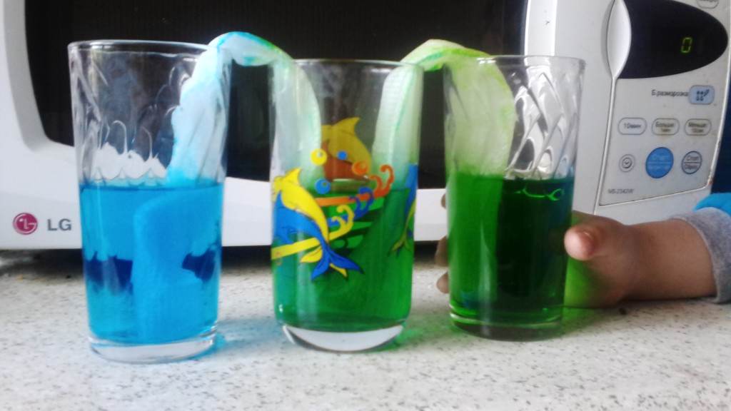 IMG 20160520 084620 1024x576 Играем и экспериментируем дома: Путешествующая цветная вода