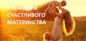 3PRICIPLES 300x143 3 принципа счастливого материнства